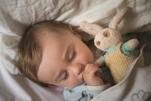 Pluszowy królik Baby Ragtales - Alfie 23 cm